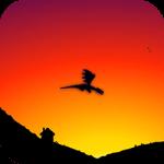 Glauron: cuentos de dragones