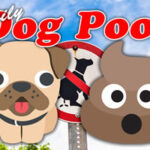 Perro Pooh diario